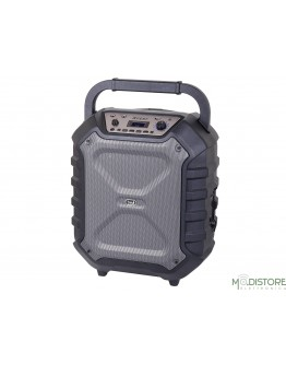 TREVI XFEST SPEAKER AMPLIFICATO CON KARAOKE, BLUETOOTH, LETTORE MP3